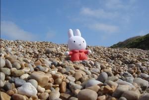 Miffy on the beach