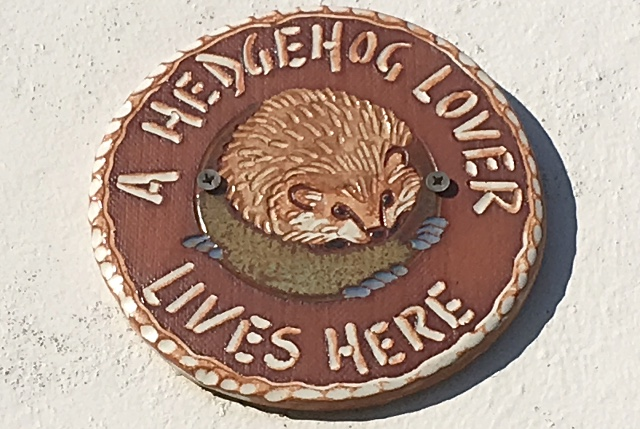 Hedgehog Lover Plaque