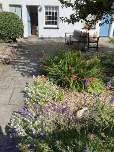 West Bay Cottage Garden in July